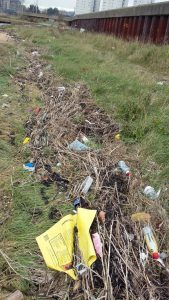 grays-beach-litter-pick-before